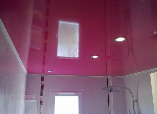 plafond-tendu-bretagne barrisol castorama professionnel leroy merlin